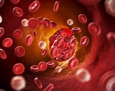 Globule rosii - Colesterol